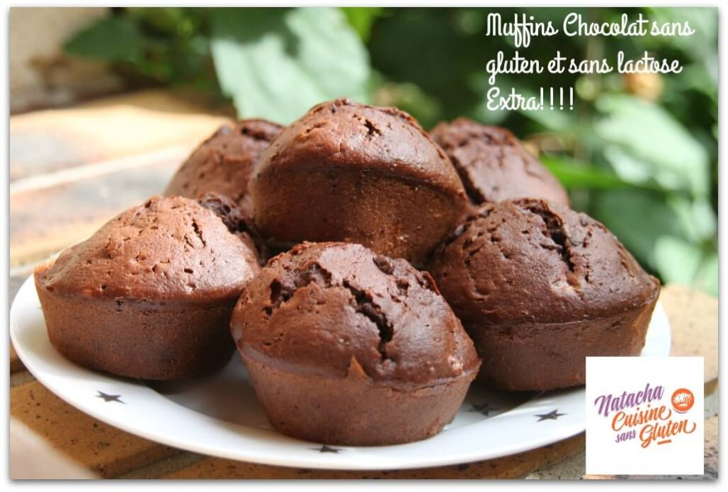 Muffins chocolat sans gluten sans lactose ma cuisine - Je cuisine sans gluten ...
