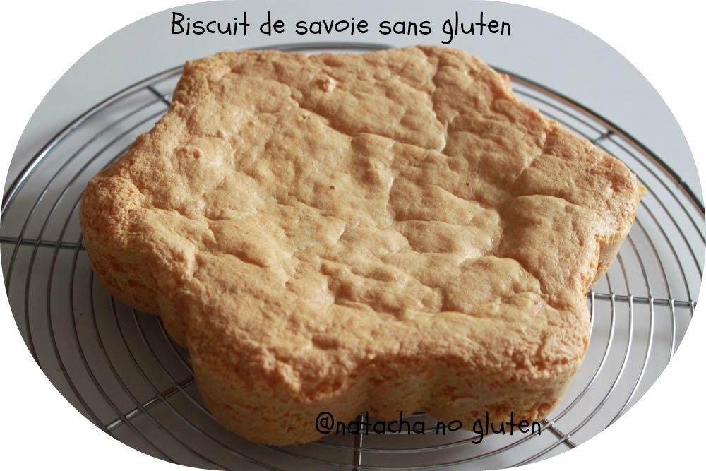 Biscuit-de-savoie