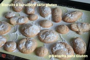 Biscuits-Cuillere-02