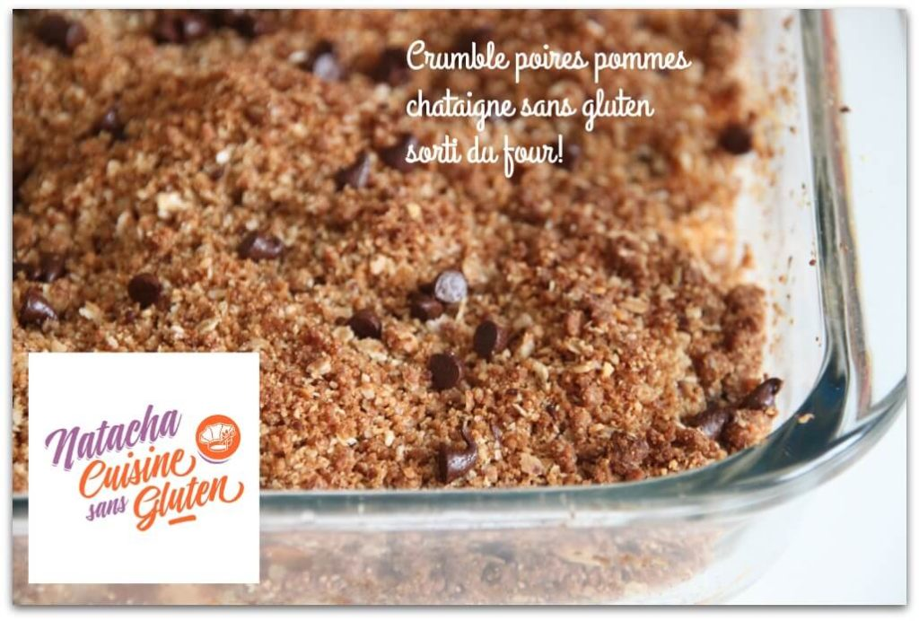 crumble Pommes Poires Chataigne sans gluten